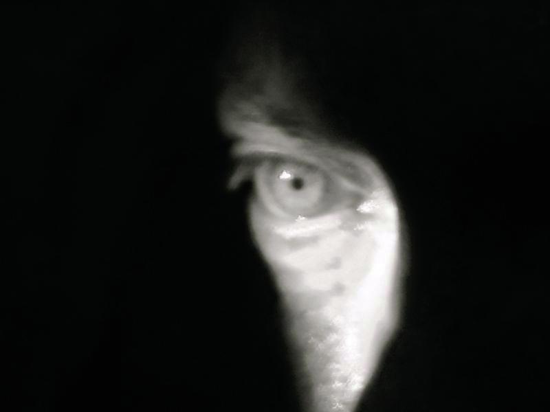 TheForbiddenRoom, eye, Udo Kier