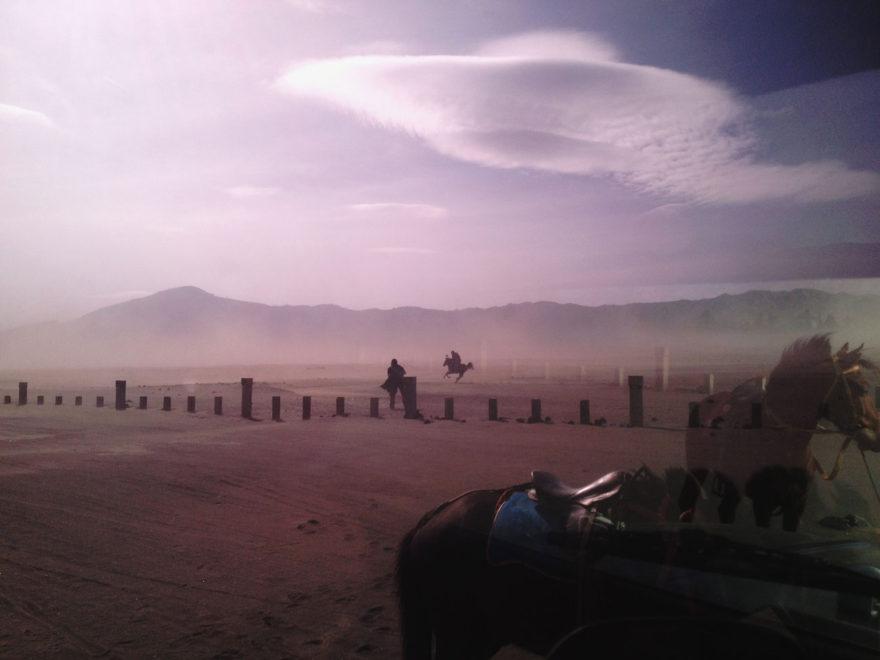 monrowemagazine-polinasova-sea-of-sand-horses