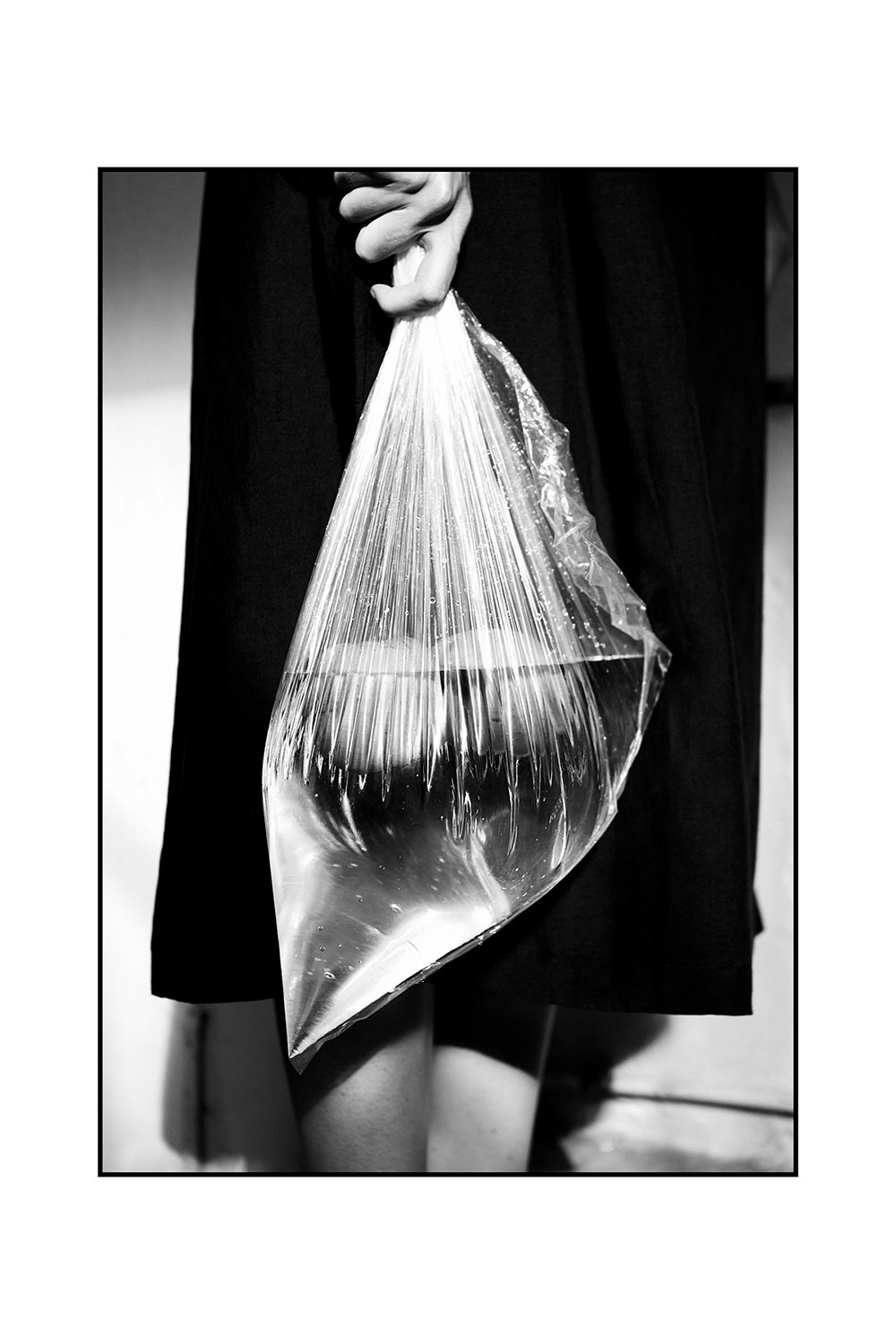Black and White Photo of bag with fish